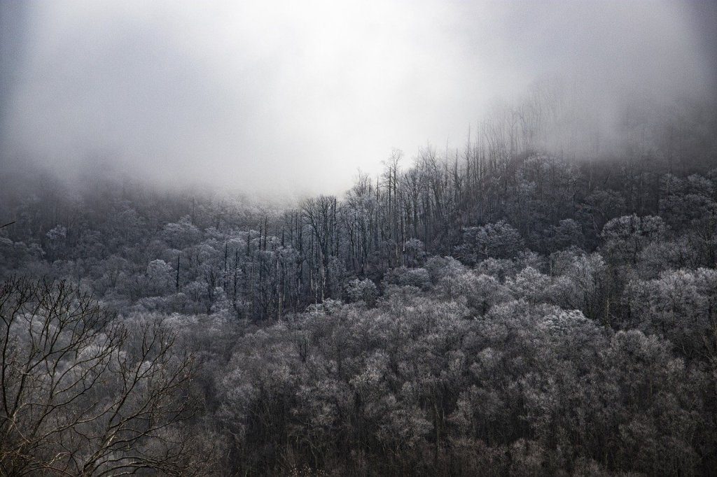 smoky mountain national park, nature, tennessee