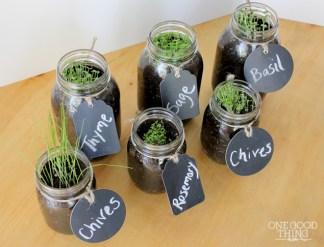 window-sill-herb-garden-11