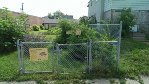 Urban Growing – Goodness in Unlikely Spaces
