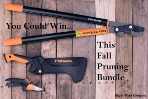 Subscribe & Win The Fiskars Fall Pruning Bundle
