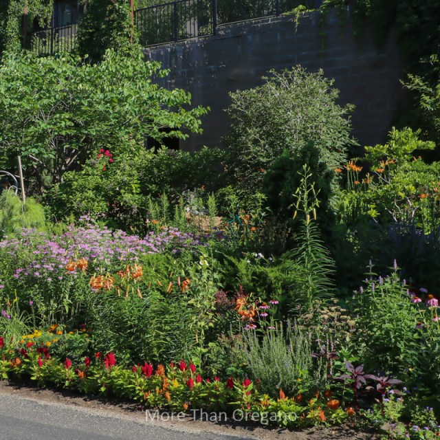 Vera's Garden: Creating Beauty On A Slope