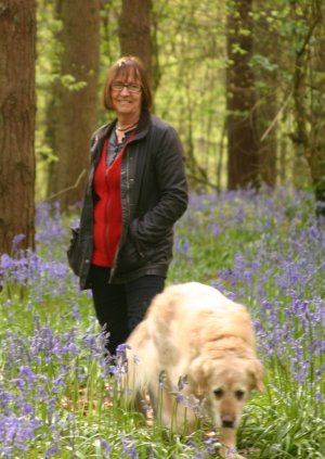 Penny in the bluebells