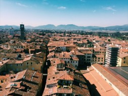 Guinigi Tower View