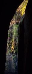 Lever de soleil sur la végétation entre des parois rocheuses au milieu de la forêt tropicale