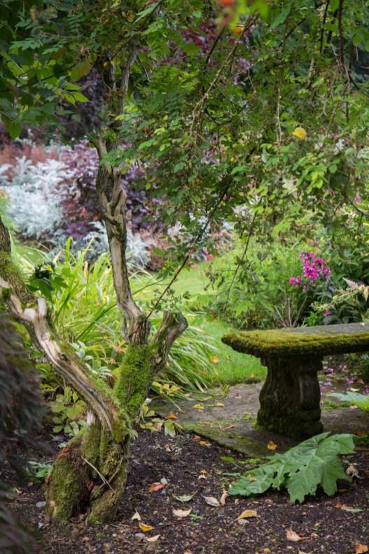 Dans le jardin du château de Crathes