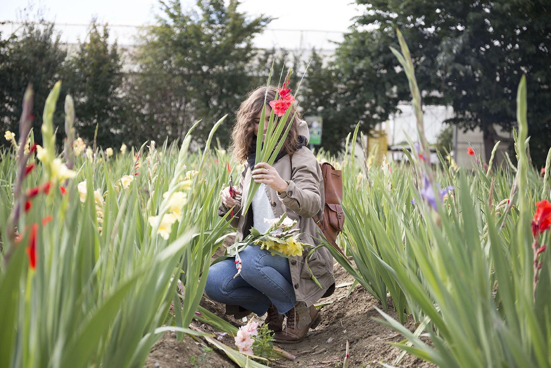 lyon entreprise fleuriste reportage