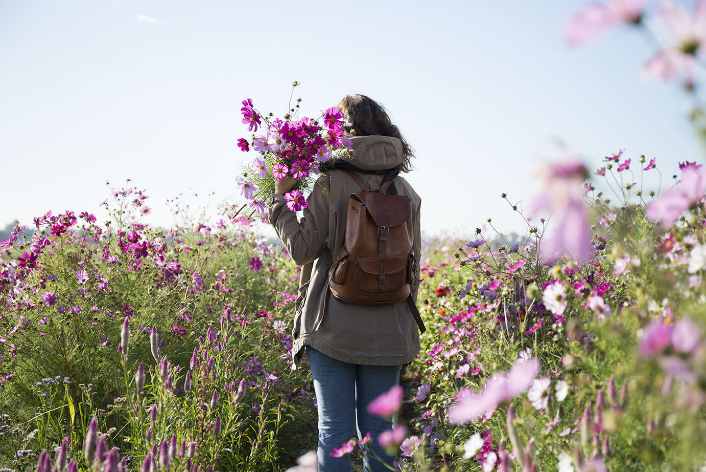 reportage entreprise fleuriste lyon