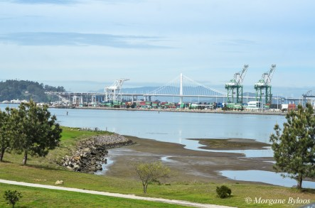 Port of Oakland and Bay Bridge from Middle Harbor Shoreline Park