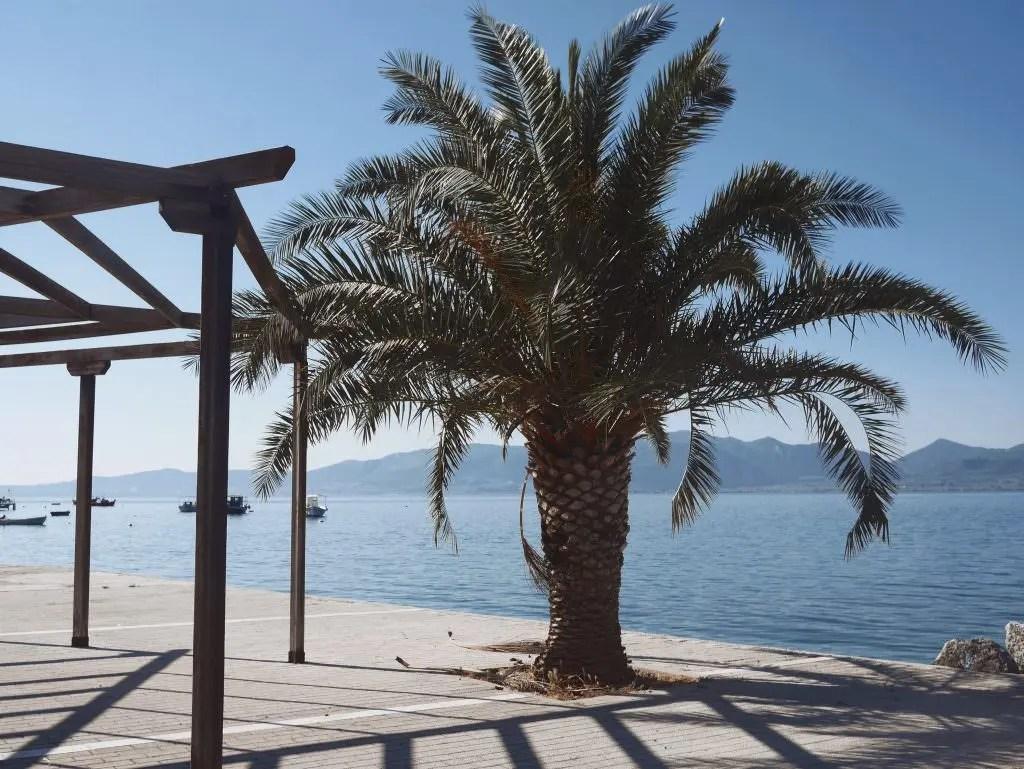 Club Med Gregolimano Grèce Saint Georges excursion bateau