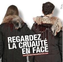 capture-decran-2016-12-17-a-10-53-52