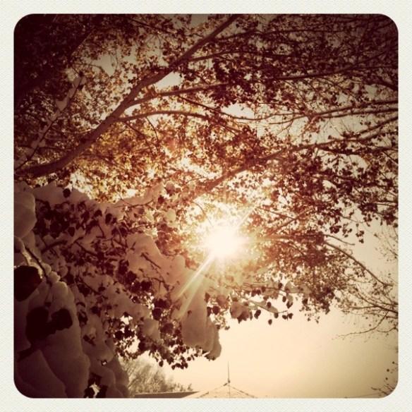 snowandsun
