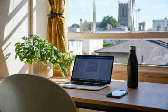 A picture of a laptop and plant on a desk in front of a window.