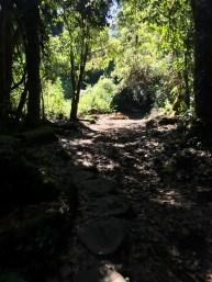 Hiking Chirripó