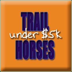 Trail Horses Under $5k