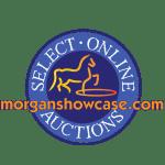 MorganShowcase Select Online Auctions