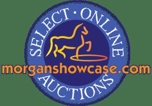 MorganShowcase Auctions