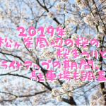2020年松ヶ峯周辺の桜の桜まつりとライトアップの期間、駐車場も調査!