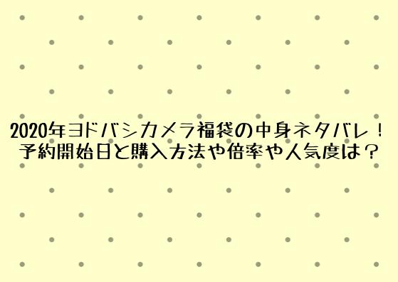 2020年ヨドバシ福袋の中身ネタバレ!予約開始日と購入方法や倍率や人気度は? (2)