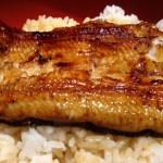 守口市でおいしい鰻が食べたいなら京阪百貨店の「豊りょう」がオススメ