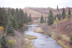 A picture of Sturgeon River flowing through GibbonsKOENIG