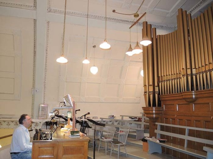 web-organ2