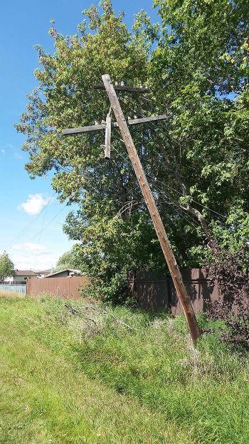 web-poles