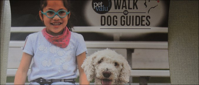 Morinville registered for the Pet Valu Virtual Walk for Dog Guides