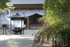 世界遺産と雄大な自然に感動  平泉・厳美渓コース