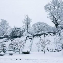 雪の盛岡城跡公園2