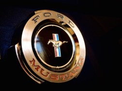 Mustang insignia details