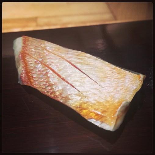 Sushi Ran - omakase - kasugodai sashimi