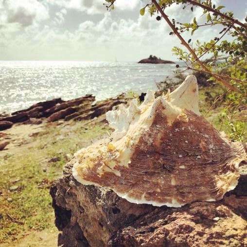 Antigua - Turner's Beach