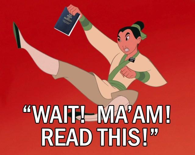 Mulan-Wait-Read-This