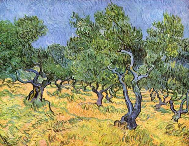 Vincent Van Gogh_Landschap met olijfbomen_L