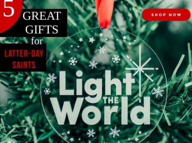 5 Great Christmas Gifts for Latter-Day Saints #LightTheWorld LDS Bookstore Deseret Book Seagull
