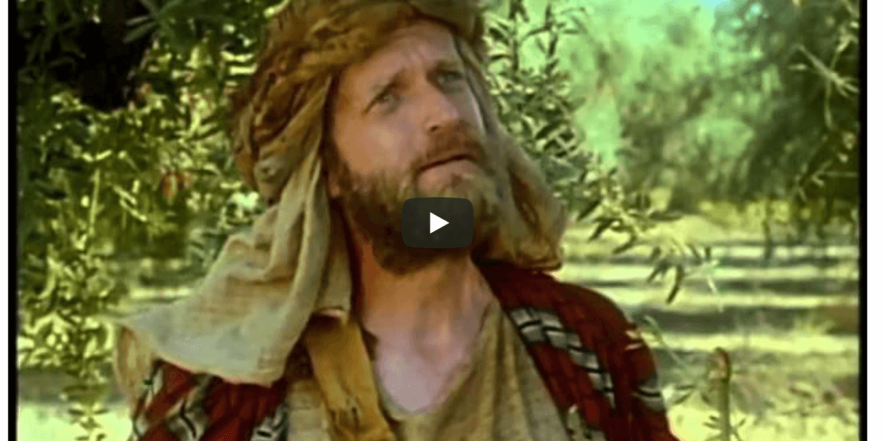 VIDEO: The Olive Tree Allegory (1993—Hard to find Mormon videos) Jacob 5-7 Come Follow Me