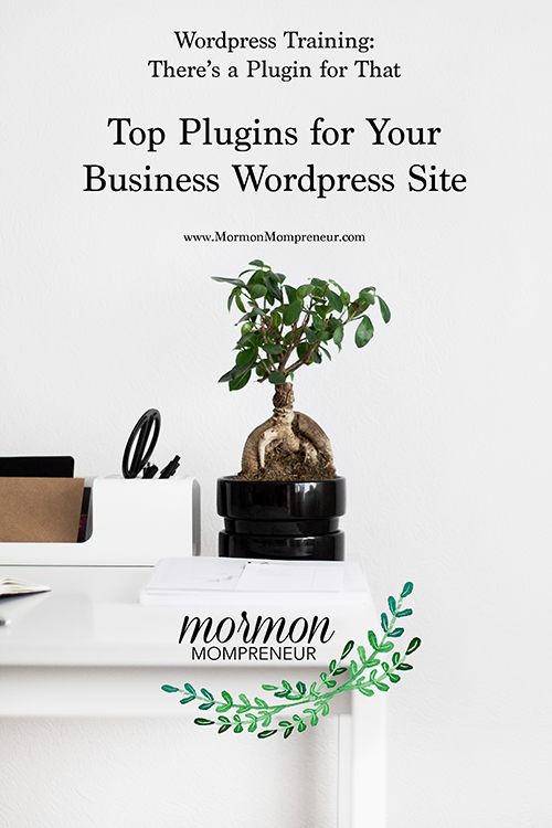 top plugins wordpress training mormon mompreneur