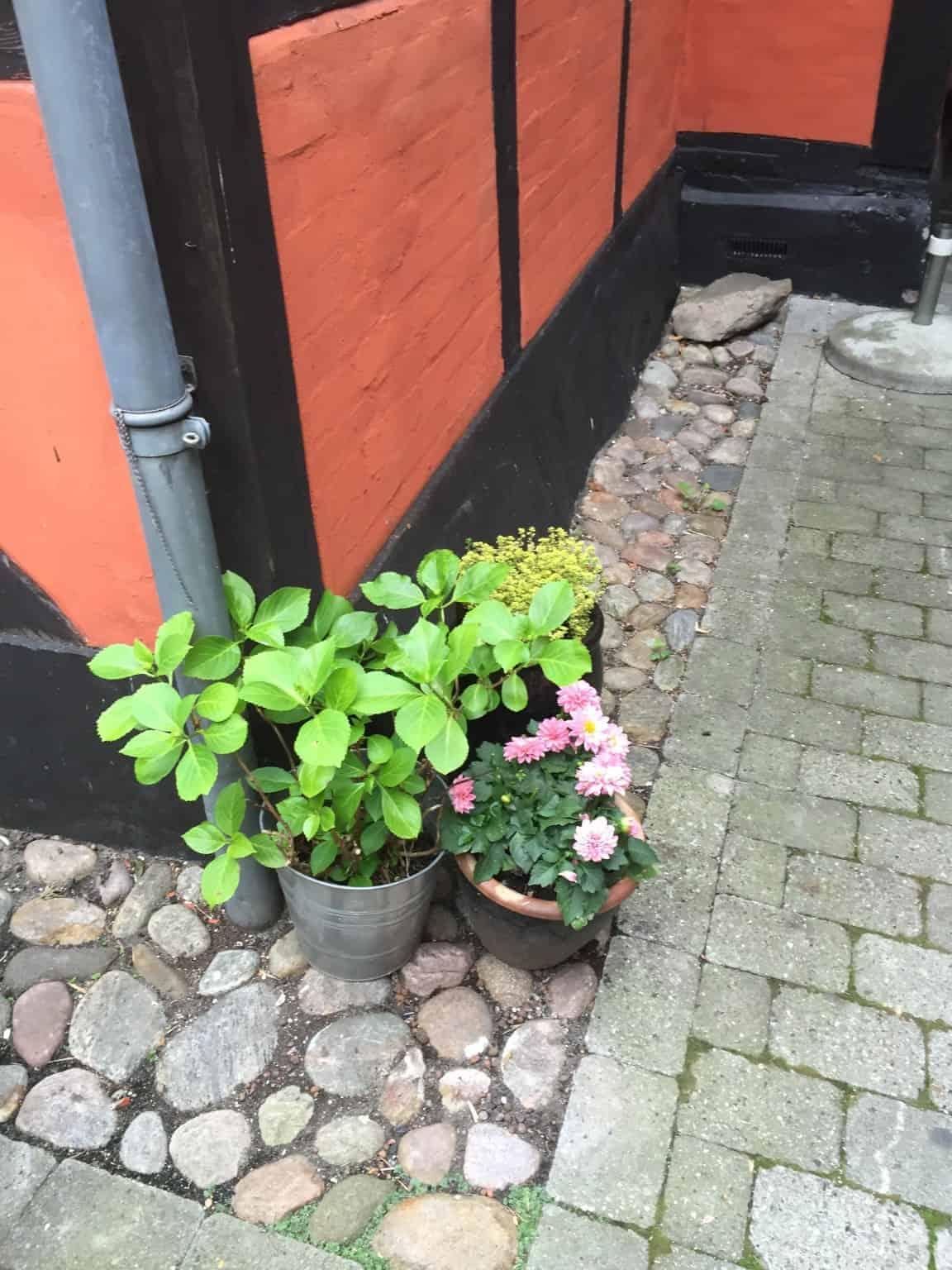 Vintapperiet i Svendborg - en megahyggelig oplevelse!