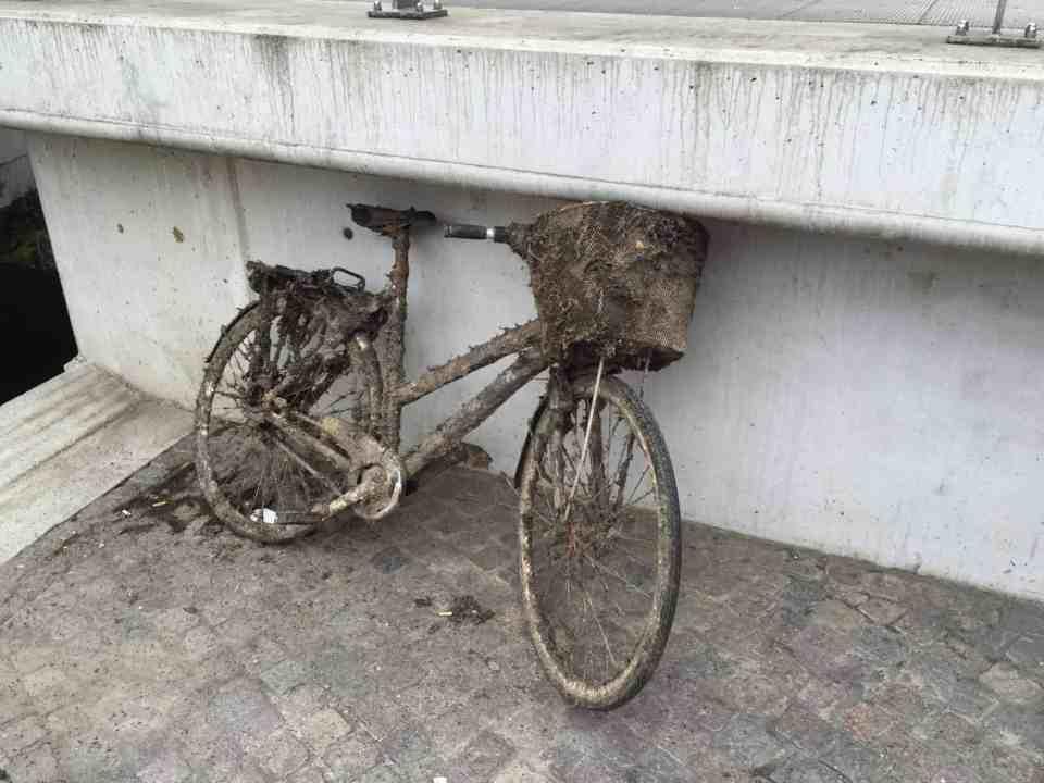Cykeltur til Åen og en lækker frokost