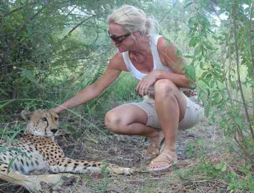cheetah og mig