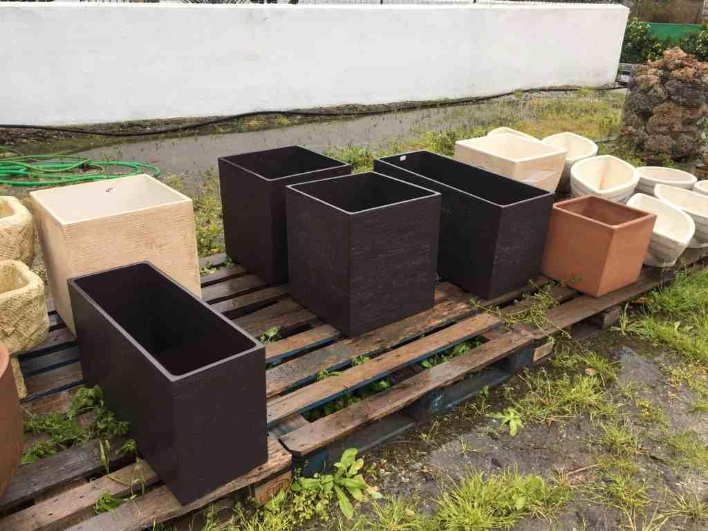 Udendørs sysler og opgraderinger på planterne...