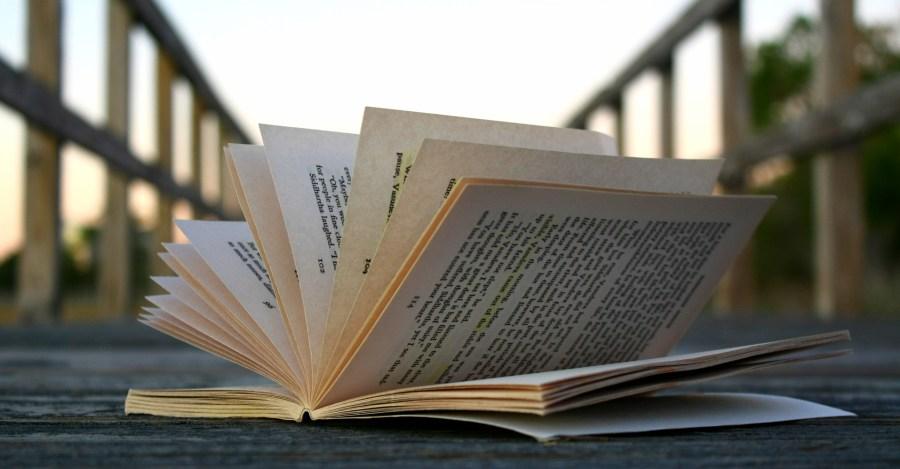 Books Make the Ultimate Travel Companions