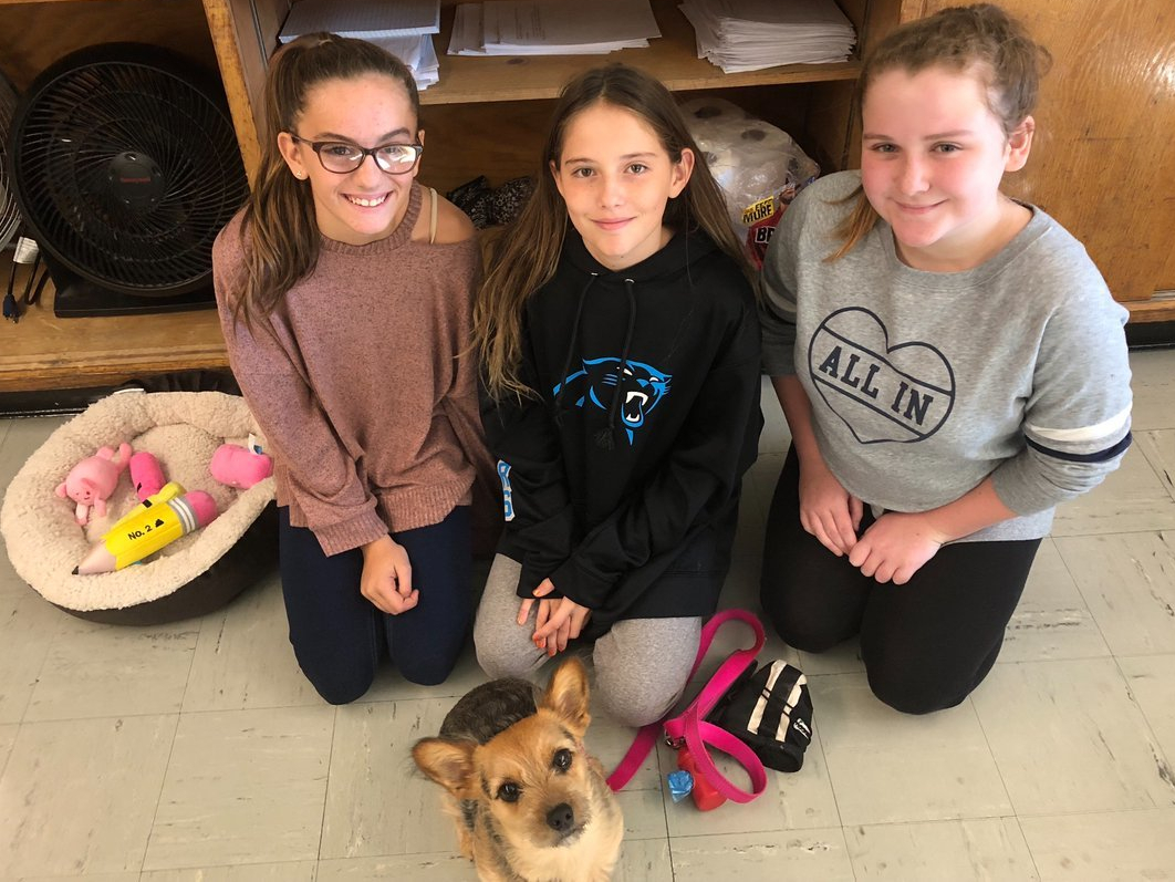 Three students on their knees behind Sugar, I.S. 7's Comfort Dog.