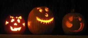Row of Jack o'lanterns.