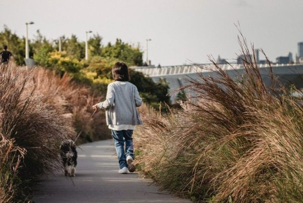 Rear shot of a child walking a dog along the High Line in NYC