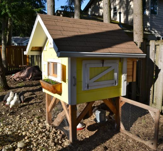 34 DIY Chicken Coop Plans That Are Easy To Build (100% Free