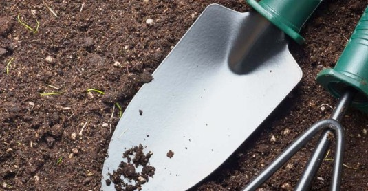 How to Start a 'No Dig' Garden That Won't Break Your Back (and Your Wallet)