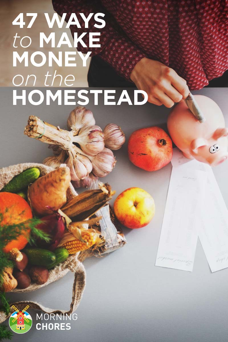 47 Ways You Can Make Extra Money While Homesteading