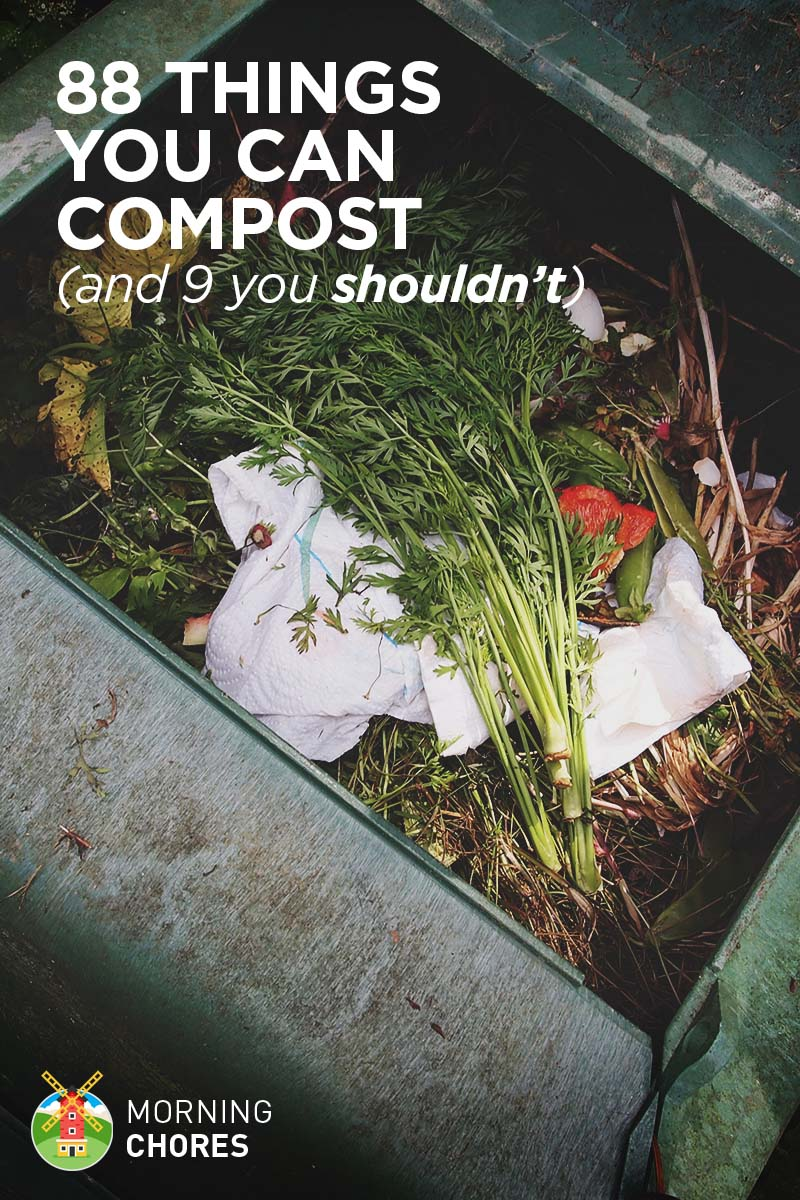 88 Everyday Things You Can Compost (and 9 You Shouldn't)
