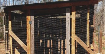 How to Build a (Practically) Free Chicken Coop in 8 Easy Steps